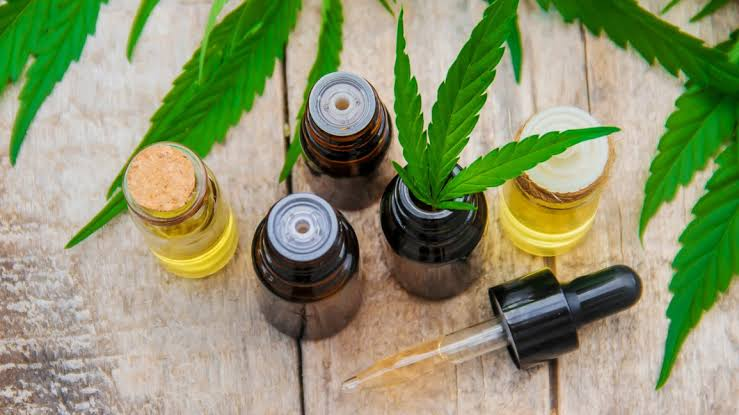 Facts that Parents should Know about CBD Oil Before Giving it to Their Kids